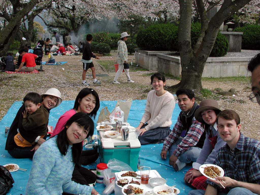 Cherry Blossom Festival Picnic